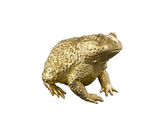Picture of GOLDEN TOAD TALISMAN