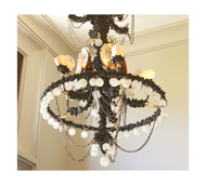 Picture of SHELL CHANDELIER 1 – ONE OF A KIND